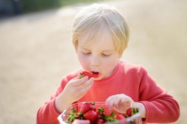 Rapaz pequeno bonito que come a morango ao ar livre.