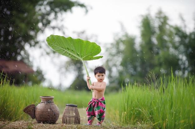 Rapaz pequeno que joga no na natureza no campo de tailândia.