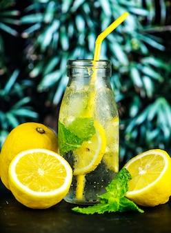 Receita de água infundida com menta limão
