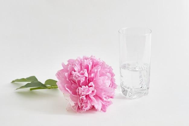 Recém-cortado peônia encontra-se na mesa, ao lado de um vaso de água.