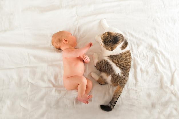 Recém-nascido dormindo perto. o bebê dorme e espaço do gato e da cópia.