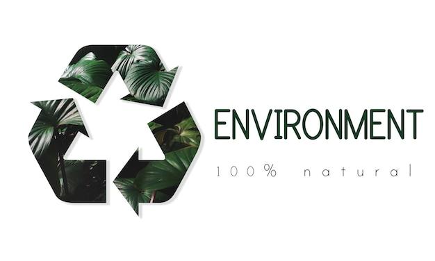 Reciclar conservação ambiental ecologia da natureza