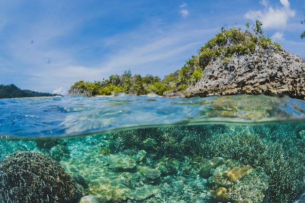 Recifes de corais abaixo da superfície de uma ilha