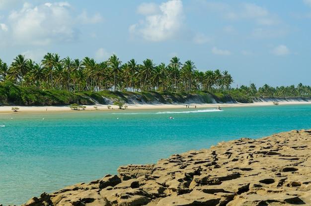 Recifes e coqueirais na praia de muro alto em porto de galinhas perto de recife pernambuco brasil