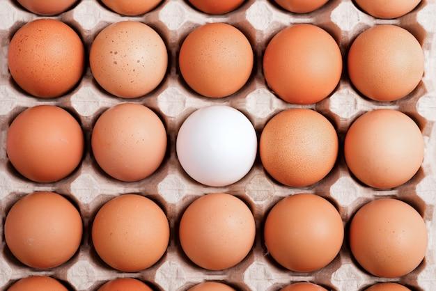 Recipiente de papercraft com ovos naturais da fazenda como alimento natural