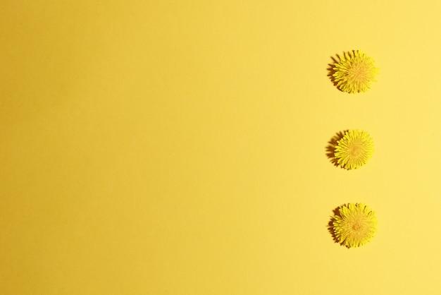 Recorte de três flores de dente-de-leão amarelo no fundo amarelo