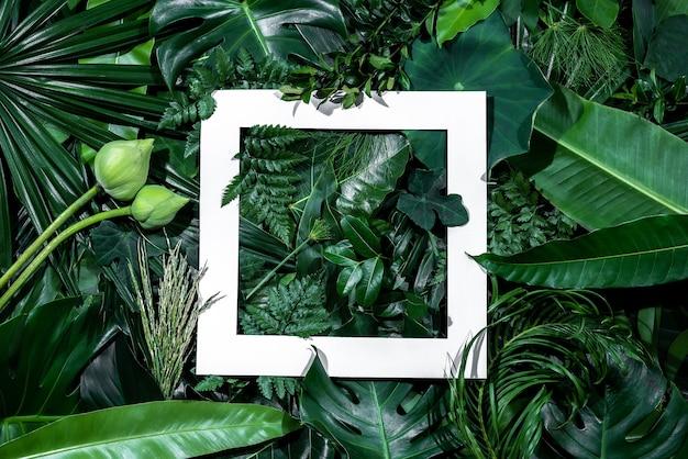 Recorte quadrado com folhas verdes alinhadas para inserir texto