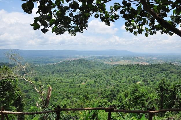 Recurso natural na floresta tropical, ásia