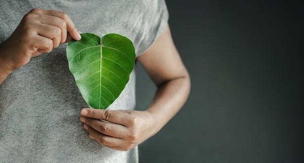 Recursos renováveis e sustentáveis de energia verde conceito de cuidado ambiental e ecológico