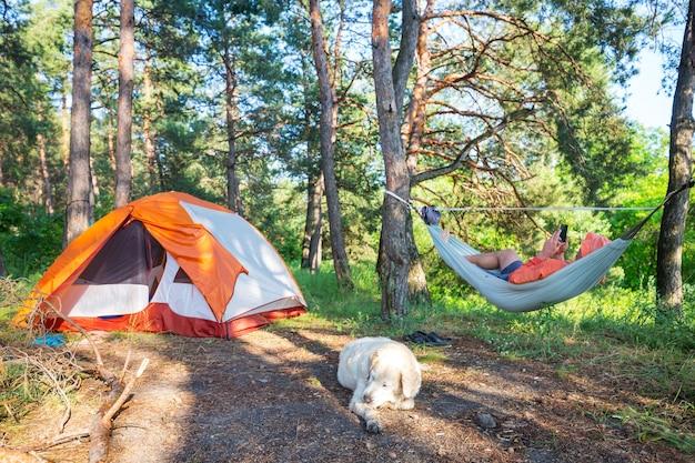 Redes nas árvores no acampamento na floresta