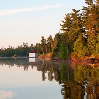 Reflexão, de, árvores, em, água, lago, de, a, madeiras, ontário, canadá
