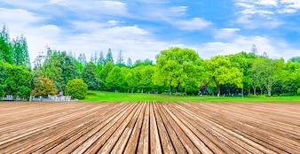 Reflexão madeira sol gramado produtos naturais campo