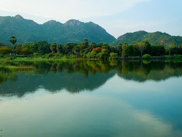 Reflexão pura da natureza em ghats ocidentais