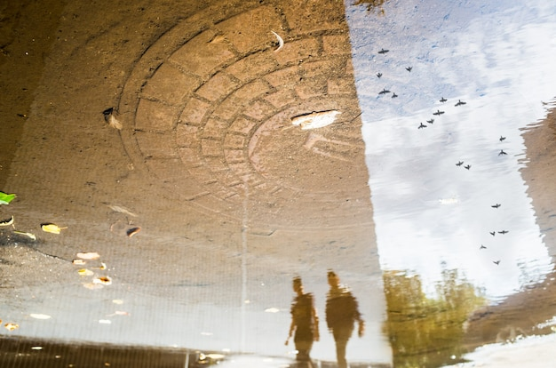 Reflexo abstrato de uma rua da cidade em uma poça chuvosa. pássaros voando