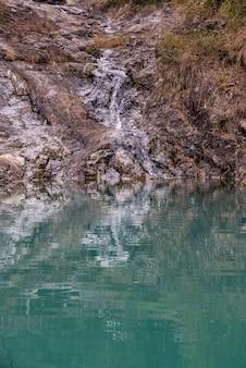 Reflexo de água límpida e criaturas subaquáticas