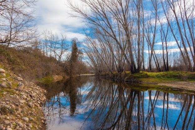 Reflexo de árvores na água de um rio com pedras nas margens