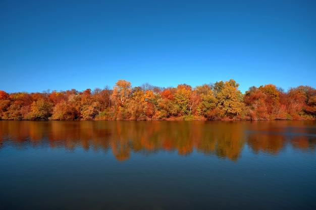 Reflexo de uma bela floresta de outono no rio, contra o fundo de um céu azul claro sem nuvens