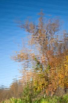 Reflexo do parque de outono em ondas de água