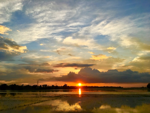 Reflexo do pôr do sol e da natureza