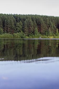 Reflexões sobre a floresta de coníferas em um lago selvagem.