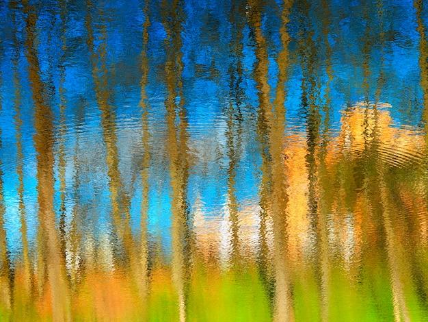 Reflexos dramáticos de água no fundo das árvores de verão