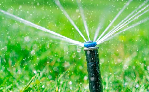 Rega automática do relvado. salpicos de água estão voando do sprinkler.