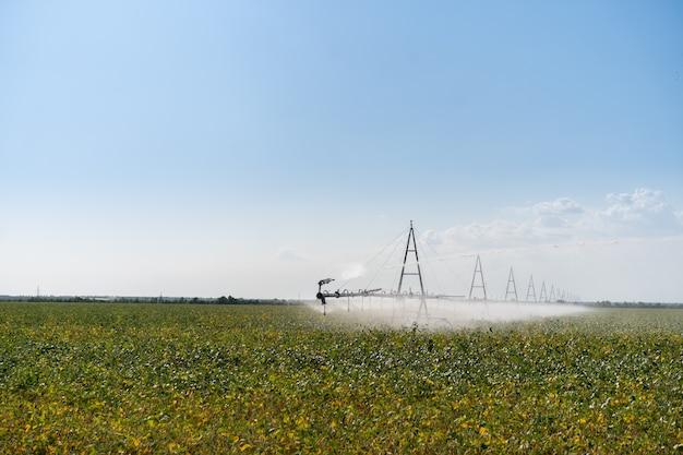 Rega de sistema de irrigação no campo agrícola