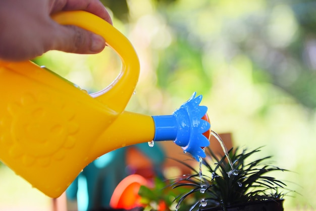 Rega planta com regador colorido na panela no jardim