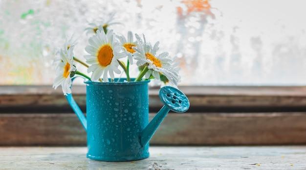 Regador azul decorativo com flores silvestres no parapeito da janela