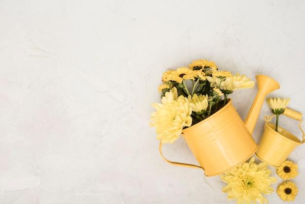 Regador de vista superior com flores amarelas