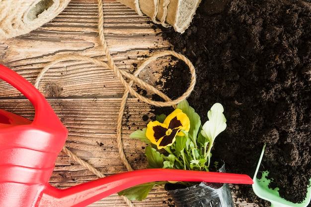 Regador vermelho; corda; vaso de flores amor-perfeito com solo fértil na mesa de madeira