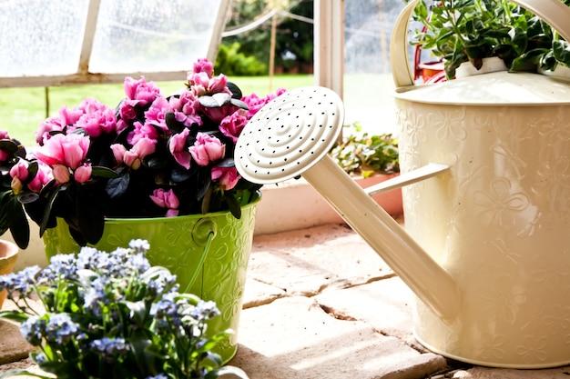 Regadores, conceito de jardinagem e hobby