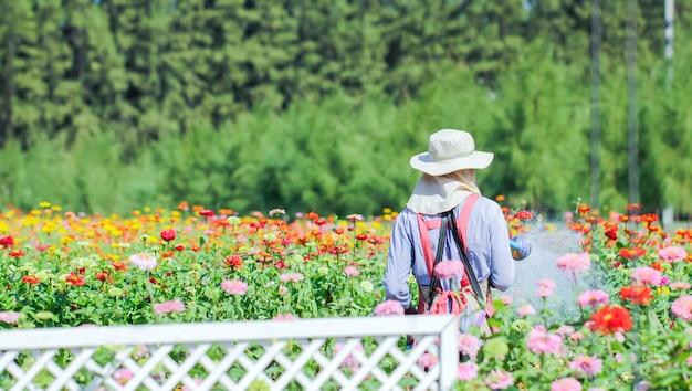 Regando flores no centro de jardim