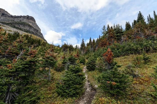 Região selvagem do outono com o céu azul no vale