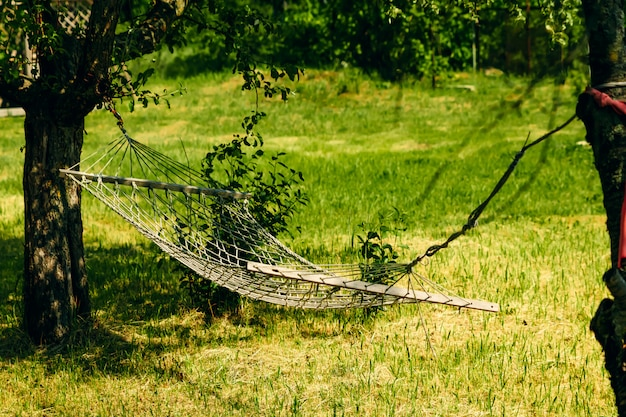 Relaxante tempo preguiçoso com rede na floresta verde