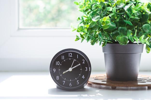 Relógio despertador e flor em pote na janela