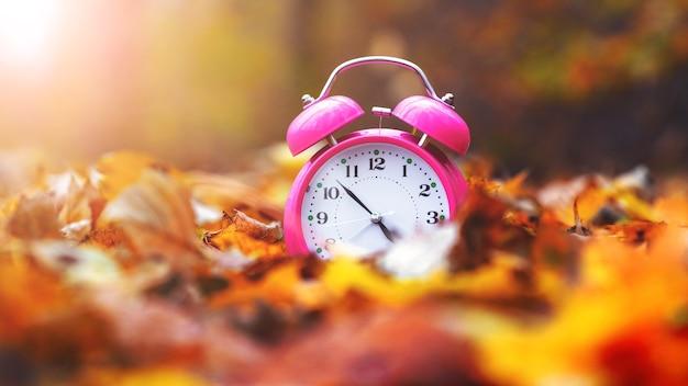 Relógio, despertador na floresta de outono entre as folhas caídas em um dia ensolarado