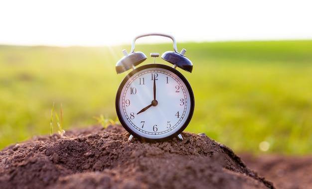Relógio despertador no fundo de uma velha árvore com musgo. tempo perdido. o relógio mostra oito horas.
