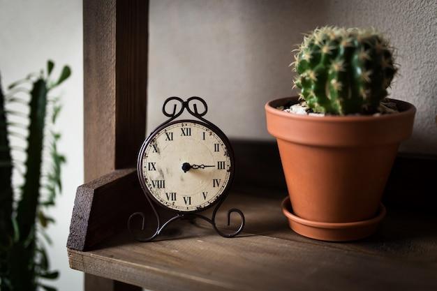 Relógios retrô. na prateleira com um cacto em uma panela.