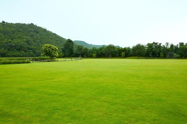 Relvados paisagem de montanha a beleza da natureza