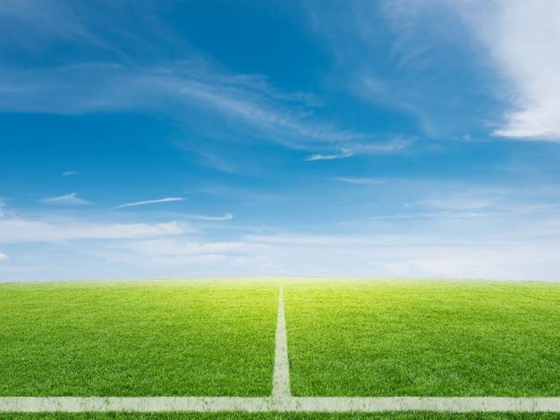 Renderização 3d campo de futebol vazio com fundo de céu azul
