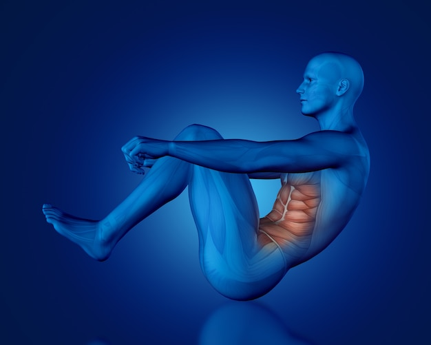 Renderização 3d de uma figura médica azul com mapa muscular parcial na posição sentada