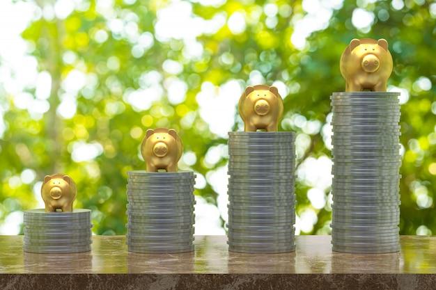 Renderização 3d, moeda com um ouro piggy, economia crescendo para negócios e idéia do conceito financeiro, moeda na madeira e árvore bokeh fundo seletivo cópia vazia de espaço para promoção mídias sociais banners