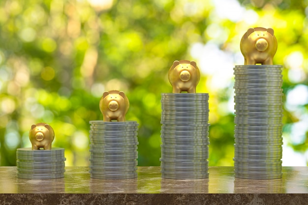 Renderização 3d, moeda com um ouro piggy, economizando crescendo para negócios e ideia do conceito financeiro