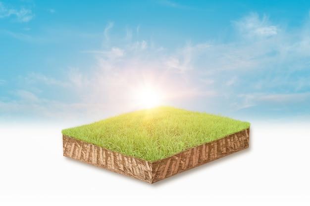 Renderização em 3d do projeto da grama verde no fundo do céu azul brilhante