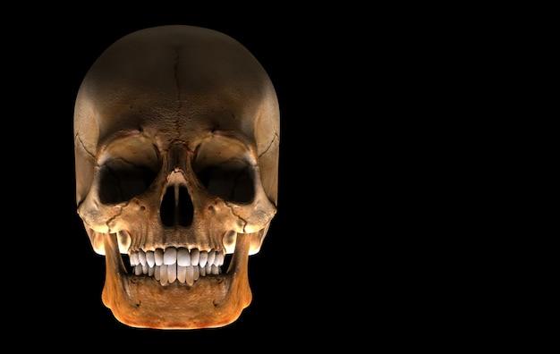 Renderização em 3d. osso envelhecido do fantasma do crânio da cabeça humana isolado no fundo preto. conceito de halloween de horror.