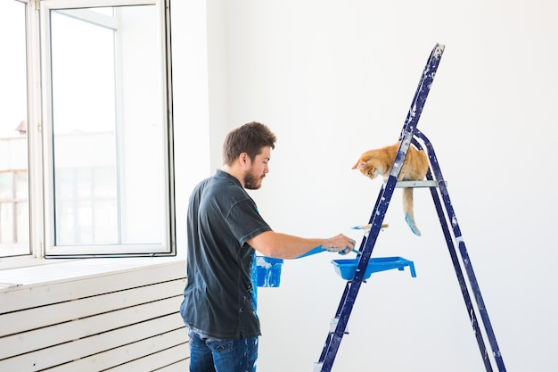 Repare o animal de estimação da renovação e o jovem conceito do casal apaixonado com um gato fazendo reparos e pintando paredes
