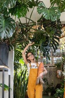 Replante de plantas de casa florista feminina com vaso de drenagem de pedras para transplante de planta de jardim