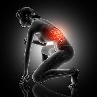 Representação 3d de uma figura feminina agachada com coluna vertebral destacada