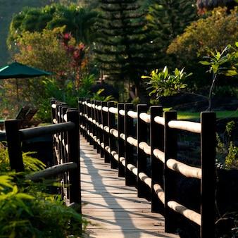 Reserva de pine ridge mountain, ponte